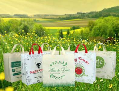 Eco Friendly Reusable Non Woven Bags